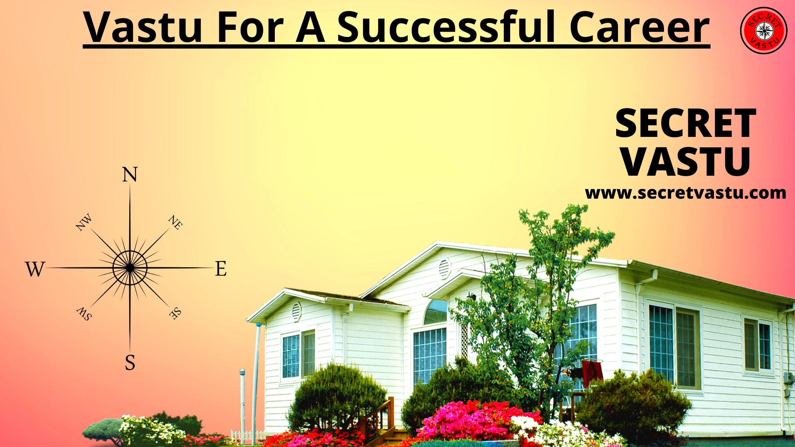 vastu successful career